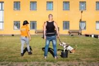 Hasseltse gedetineerden gaan asielhonden trainen