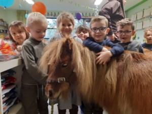 Pony's van het Equizorgbos op bezoek in Berbroek