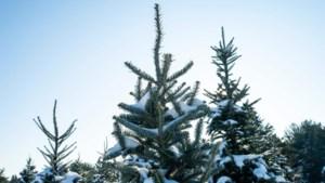 Eerste voorspellingen: krijgen we een witte kerst?