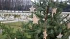 Een ster voor wie er niet meer is op begraafplaatsen in Pelt