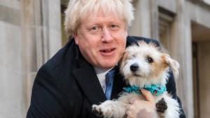 Gegokt en gewonnen: Johnson grote winnaar Britse verkiezingen