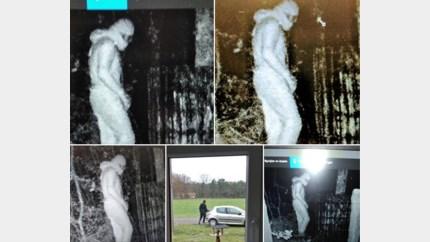 Wildplassende inbreker met wildcamera gefilmd