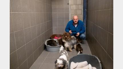 22 katten en zes honden in beslag genomen