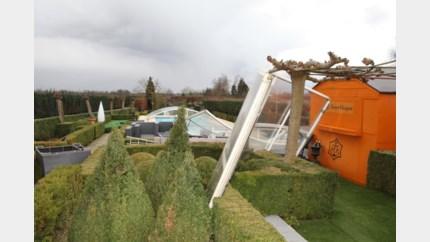 Stormschade maart erkend voor vier Limburgse gemeenten