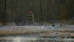 Mee op drukjacht: uren in de kou zonder een everzwijn te zien