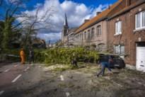 Minder schade door stormweer dan verwacht