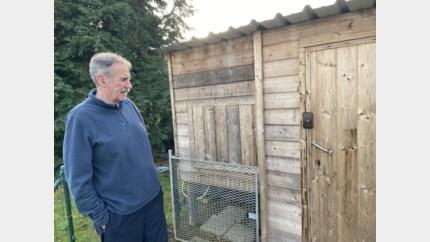 Inbraak in zes tuinhuizen, voor 3.000 euro weg aan materiaal