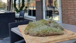 Middenstip van Meldert ligt… op terras van café