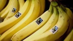 Strengere regels voor fruit en groenten in bagage