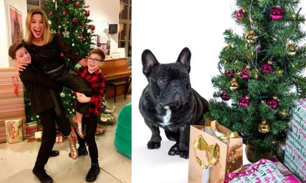 Strikjes, huisdieren en bubbels: zo vieren onze BV's Kerstmis
