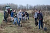 Kinrooi start crowdfunding voor gemeentelijk klimaatbos
