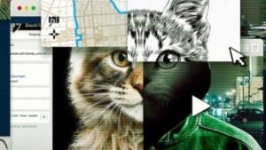 Waarom je na 'Don't F**k With Cats' op Netflix maar moeilijk de slaap kunt vatten