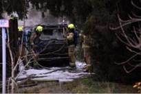 Lichte bestelwagen brandt uit oprit van huis in Achel