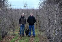 Twee Limburgse gezinnen in 'Boerenjaar'