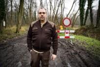 Tien everzwijnen gedood tijdens drukjacht in gebied De Aenhof