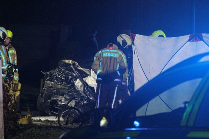 Man op slag dood na frontale klap tegen truck op Meeuwerkiezel