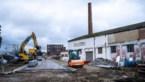 Gelatinefabriek gaat tegen de grond