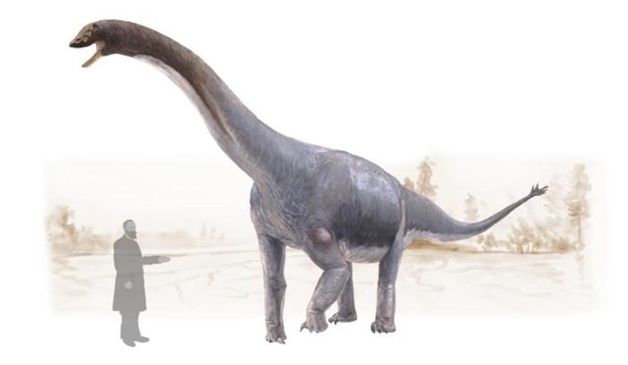 Belgisch onderzoek toont aan: ook dinosaurussen hadden kanker
