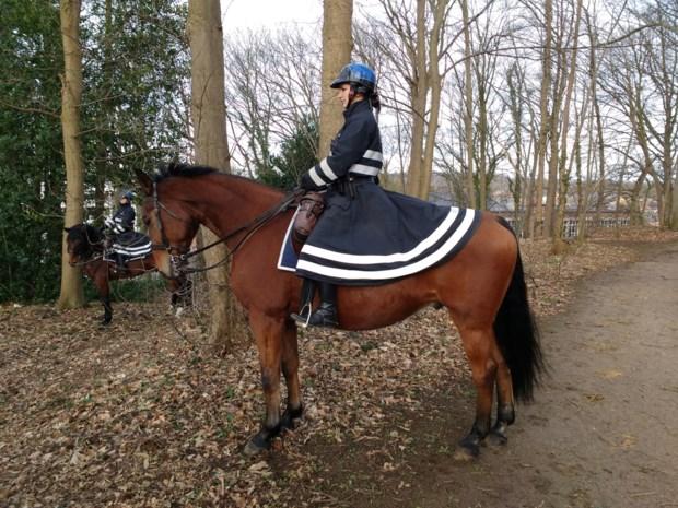 Politie Demerdal zet patrouilles te paard in