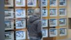 Uitzonderlijk woningaanbod in Limburg, daarom stijgen de prijzen minder snel