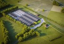 Groot melkveebedrijf met 458 koeien en 302 stuks jongvee in Diepenbeek krijgt vorm