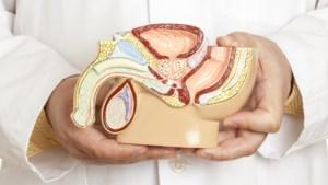 """""""100 doden per jaar minder"""": moeten testen op prostaatkanker terugbetaald worden?"""
