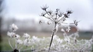 Was het nu sneeuw, industriesneeuw of toch nog iets anders?