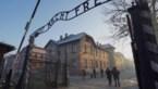 Eén op vijf Duitsers vindt dat herdenking Holocaust te veel aandacht krijgt