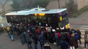 Oplossing voor bushalte aan asielcentrum Parelstrand Lommel