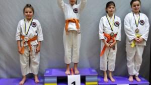 Karateclub Shingitai Hoeselt schittert op Tomodachi Cup.