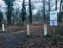 'Bosexplosie' blijk bosexploitatie
