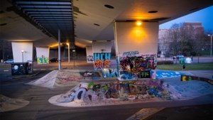 Nederlands-Limburg staakt strijd tegen graffiti, België poetst voort