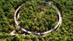 Fietsen door de Bomen wint goud op internationale design awards in Los Angeles