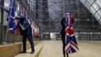 """""""Verschrikkelijk. Ik ga me bezatten straks"""": zo beleven Vlamingen met Britse roots Brexit-dag"""