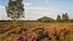 Nationaal Park Hoge Kempen wordt dubbel zo groot