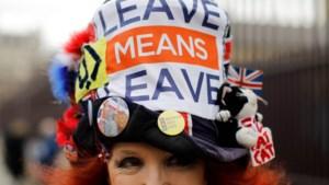 Nieuwe Brexit-verdragen dreigen proces vol open ruzies te worden: Britten willen salami, EU wil ravioli