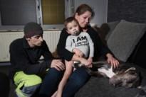 Burgemeester laat agressieve pitbull inslapen, eigenaars nemen advocaat onder de arm