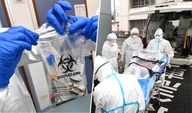 Vorsers in Rome zetten belangrijke stap in onderzoek naar coronavirus