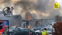 Garage brandt volledig uit in Alken, eigenaar lichtgewond afgevoerd