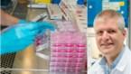 Werelddag tegen Kanker: Hoe goed kunnen we kanker al genezen en komt het vaker voor?