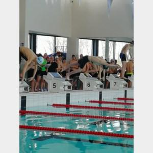 PTS sportafdeling Maasmechelen zwemt naar de top