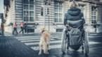 Dienst voor personen met handicap neemt de telefoon weer op