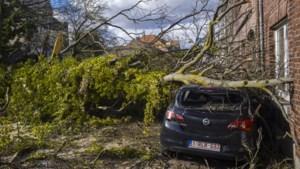Limburg zet zich schrap voor storm op zondag