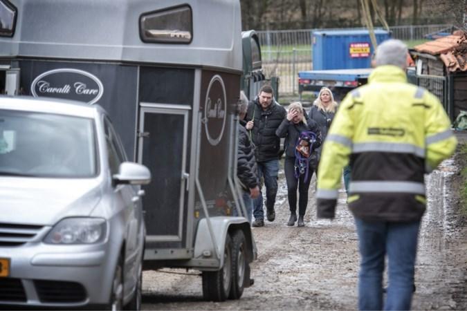 Brand doodt tien paarden in Heerlense manege: eigenaren ontroostbaar