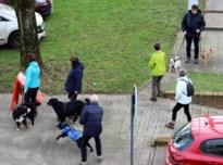 Wandelclub Partnerwalk steunt Belgisch Centrum voor Geleidehonden