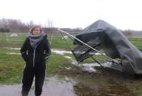 """Storm Ciara slaat toe op zorgboerderij: """"Therapiedieren gelukkig ongedeerd"""""""
