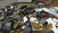 Wiettelers dumpen volledige installatie voor cannabiskweek in Eksel