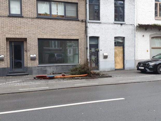 """Hasseltse inbreker ramt auto's met gestolen Fiat: """"Tegen alles zegt hij 'foert ermee'"""""""