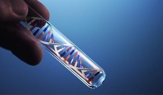 Oprichting afstammingscentrum en DNA-databank definitief goedgekeurd