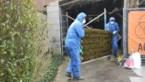 Wie 'De Huisdokter' inroept om asbest te verwijderen betaalt maar de helft